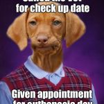 Goes to appointment anyway | Called the Vet for check up date Given appointment for euthanasia day | image tagged in bad luck raydog,veterinarian,appointment,mistake,euthenasia schedule | made w/ Imgflip meme maker
