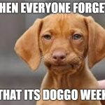 It's Doggo Week! (March 10 - March 16) | WHEN EVERYONE FORGETS THAT ITS DOGGO WEEK | image tagged in disappointed dog | made w/ Imgflip meme maker