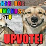 there really is no limit on teh number of textboxes, huh? | S UPVOTE! T O N E R D O G C O M M A N D S Y O U T O | image tagged in memes,original stoner dog | made w/ Imgflip meme maker