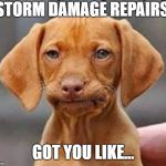 Frustrated dog | STORM DAMAGE REPAIRS GOT YOU LIKE... | image tagged in frustrated dog | made w/ Imgflip meme maker