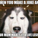 Annoyed Dog | WHEN YOU MAKE A JOKE AND YOUR MOM MAKES IT A LIFE LESSON | image tagged in annoyed dog | made w/ Imgflip meme maker
