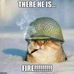 War Cat | THERE HE IS... FIRE!!!!!!!!! | image tagged in war cat | made w/ Imgflip meme maker
