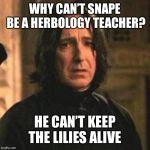 Professor Snape Blank Template Imgflip