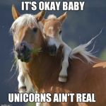Foal Of Mine Meme | IT'S OKAY BABY UNICORNS AIN'T REAL | image tagged in memes,foal of mine | made w/ Imgflip meme maker