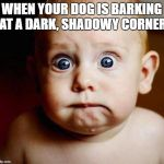 scared baby | WHEN YOUR DOG IS BARKING AT A DARK, SHADOWY CORNER | image tagged in scared baby | made w/ Imgflip meme maker