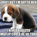 Not deleting the account, just going away. Idk where tho, maybe I'll become a YouTuber. | SORRY BUT I'M OUTTA HERE I NEVER REALIZED IMGFLIP COULD BE SO TOXIC | image tagged in sad dog | made w/ Imgflip meme maker