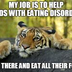 Confession Tiger | MY JOB IS TO HELP KIDS WITH EATING DISORDER I GO THERE AND EAT ALL THEIR FOOD | image tagged in confession tiger | made w/ Imgflip meme maker