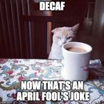 The joke that never left us. | DECAF NOW THAT'S AN APRIL FOOL'S JOKE | image tagged in cat doesn't like this coffee,coffee,decafe,april fools | made w/ Imgflip meme maker