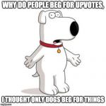 Family Guy Brian Meme | WHY DO PEOPLE BEG FOR UPVOTES, I THOUGHT ONLY DOGS BEG FOR THINGS | image tagged in memes,family guy brian | made w/ Imgflip meme maker