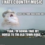 "Screaming Cowboy Cat | I HATE COUNTRY MUSIC HEARS OLD TOWN ROAD REMIX ONCE ""YEAH, I'M GONNA TAKE MY HORSE TO THE OLD TOWN ROAD..."" 