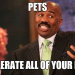 A Pet...your best companion | PETS TOLERATE ALL OF YOUR B.S. | image tagged in memes,steve harvey,pets,animals | made w/ Imgflip meme maker