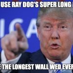 ray dog...... | IF WE USE RAY DOG'S SUPER LONG MEME ITD BE THE LONGEST WALL WED EVER NEED | image tagged in i will build a wall,memes | made w/ Imgflip meme maker
