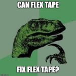 Dinosaur | CAN FLEX TAPE FIX FLEX TAPE? | image tagged in dinosaur | made w/ Imgflip meme maker