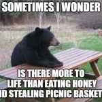 Bad Luck Bear Meme | SOMETIMES I WONDER IS THERE MORE TO LIFE THAN EATING HONEY AND STEALING PICNIC BASKETS? | image tagged in memes,bad luck bear | made w/ Imgflip meme maker