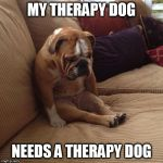therapy dog | MY THERAPY DOG NEEDS A THERAPY DOG | image tagged in therapy | made w/ Imgflip meme maker