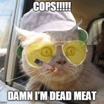 Fear And Loathing Cat Meme | COPS!!!!! DAMN I'M DEAD MEAT | image tagged in memes,fear and loathing cat | made w/ Imgflip meme maker