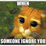 Shrek Cat Meme | WHEN SOMEONE IGNORE YOU | image tagged in memes,shrek cat | made w/ Imgflip meme maker