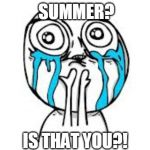 Crying Because Of Cute Meme | SUMMER? IS THAT YOU?! | image tagged in memes,crying because of cute | made w/ Imgflip meme maker