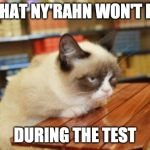 Grumpy Cat Table Meme | WHAT NY'RAHN WON'T DO DURING THE TEST | image tagged in memes,grumpy cat table,grumpy cat | made w/ Imgflip meme maker