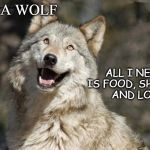 Optimistic Moon Moon Wolf Vanadium Wolf | I'M A WOLF ALL I NEED IS FOOD, SHELTER    AND LOVE! | image tagged in optimistic moon moon wolf vanadium wolf | made w/ Imgflip meme maker
