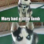 Insanity Puppy Meme | Mary had a little lamb HAD | image tagged in memes,insanity puppy | made w/ Imgflip meme maker