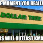 Dollar Tree | THE MOMENT YOU REALIZED THIS WILL OUTLAST KMART | image tagged in dollar tree | made w/ Imgflip meme maker
