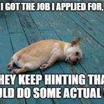tired dog | BUMMER.  I GOT THE JOB I APPLIED FOR,  AND NOW THEY KEEP HINTING THAT I SHOULD DO SOME ACTUAL WORK. | image tagged in tired dog | made w/ Imgflip meme maker