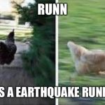 running chicken | RUNN THERES A EARTHQUAKE RUNNNNNN | image tagged in running chicken | made w/ Imgflip meme maker