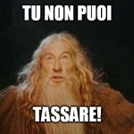 gandalf | TU NON PUOI TASSARE! | image tagged in gandalf | made w/ Imgflip meme maker