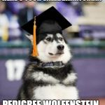 Graduate Dog | HERE'S YOUR VALEDBARKTORIAN PEDIGREE WOLFENSTEIN | image tagged in graduate dog | made w/ Imgflip meme maker