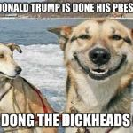 Original Stoner Dog Meme | WHEN DONALD TRUMP IS DONE HIS PRESIDENCY DING DONG THE DICKHEADS GONE | image tagged in memes,original stoner dog | made w/ Imgflip meme maker