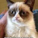 Grumpy Cat Meme | R.I.P GRUMPY CAT REST IN PESSIMISM | image tagged in memes,grumpy cat | made w/ Imgflip meme maker