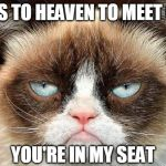 Grumpy Cat Not Amused Meme | GOES TO HEAVEN TO MEET GOD YOU'RE IN MY SEAT | image tagged in memes,grumpy cat not amused,grumpy cat | made w/ Imgflip meme maker