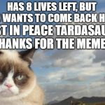 Grumpy Cat Sky | HAS 8 LIVES LEFT, BUT WHO WANTS TO COME BACK HERE? REST IN PEACE TARDASAUCE, THANKS FOR THE MEMES. | image tagged in memes,grumpy cat sky,grumpy cat | made w/ Imgflip meme maker