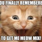 Excited Cat Meme | YOU FINALLY REMEMBERED TO GET ME MEOW MIX! | image tagged in memes,excited cat | made w/ Imgflip meme maker