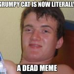 10 Guy Meme | GRUMPY CAT IS NOW LITERALLY A DEAD MEME | image tagged in memes,10 guy | made w/ Imgflip meme maker