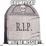 RIP | GRUMPY CAT WILL BE MISSED | image tagged in rip | made w/ Imgflip meme maker