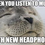Satisfied Seal | WHEN YOU LISTEN TO MUSIC WITH NEW HEADPHONES | image tagged in memes,satisfied seal,music,headphones,news | made w/ Imgflip meme maker