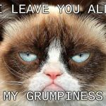 RIP, the world is a grumpier place | I LEAVE YOU ALL MY GRUMPINESS | image tagged in memes,grumpy cat not amused,grumpy cat | made w/ Imgflip meme maker