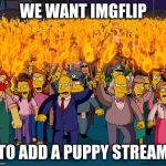 angry mob | WE WANT IMGFLIP TO ADD A PUPPY STREAM | image tagged in angry mob | made w/ Imgflip meme maker
