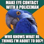 Paranoid Parrot Meme | MAKE EYE CONTACT WITH A POLICEMAN WHO KNOWS WHAT HE THINKS I'M ABOUT TO DO?! | image tagged in memes,paranoid parrot | made w/ Imgflip meme maker