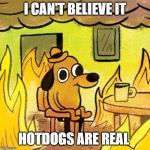 Dog in burning house | I CAN'T BELIEVE IT HOTDOGS ARE REAL | image tagged in dog in burning house | made w/ Imgflip meme maker