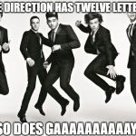 One direction | ONE DIRECTION HAS TWELVE LETTERS SO DOES GAAAAAAAAAAY | image tagged in one direction | made w/ Imgflip meme maker