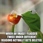 Good riddance! | WHEN AN IMAGE I FLAGGED TWICE UNDER DIFFERENT REASONS ACTUALLY GETS DELETED. | image tagged in memes,but thats none of my business,kermit the frog,flag,feels good man | made w/ Imgflip meme maker