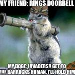 Bazooka Squirrel Meme | MY FRIEND: RINGS DOORBELL MY DOGE: INVADERS!! GET TO THE BARRACKS HUMAN. I'LL HOLD HIM | image tagged in memes,bazooka squirrel | made w/ Imgflip meme maker