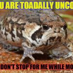 Grumpy Toad Meme | YOU ARE TOADALLY UNCOOL IF YOU DON'T STOP FOR ME WHILE MOWING! | image tagged in memes,grumpy toad | made w/ Imgflip meme maker