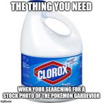 bleach | THE THING YOU NEED WHEN YOUR SEARCHING FOR A STOCK PHOTO OF THE POKÉMON GARDEVIOR | image tagged in bleach | made w/ Imgflip meme maker