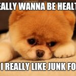 Sad puppy | I REALLY WANNA BE HEALTHY BUT I REALLY LIKE JUNK FOOD... | image tagged in sad puppy | made w/ Imgflip meme maker