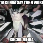Knife Cat | I'M GONNA SAY THE N WORD SOCIAL MEDIA | image tagged in knife cat | made w/ Imgflip meme maker