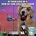 "I Have No Idea What I Am Doing Dog Meme | MY FRIEND ASKED ME IF I KNOW ANY GOOD JOKES ABOUT SODIUM. I SAID, ""NA."" 